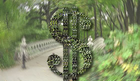 Hedge Dollar